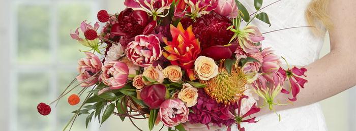 IFD_Flower_Trends_VibrantVibe_Rio_TintedCraspedia1
